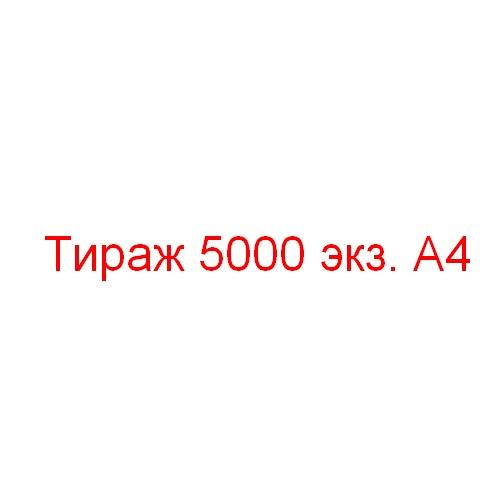 Тираж 5000 экземпляров А4